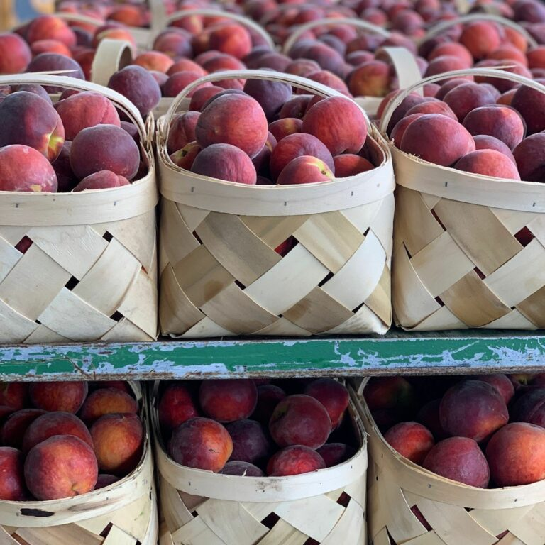 Certified SC Instagram image: Our peaches are plentiful — head to your local farmers market, roadside stand or nearby farmer for locally grown peaches.  CertifiedSC.com